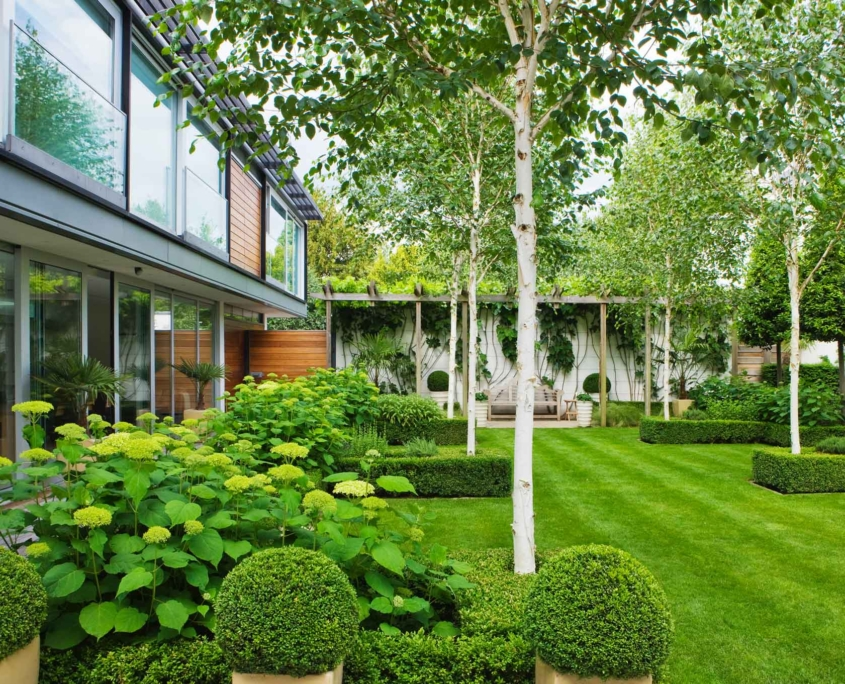 A contemporary Garden designed by us in Petersham, Richmond, Surrey
